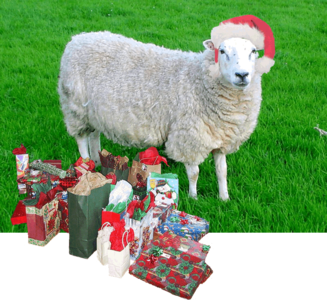 Santa Sheep -Santa Sheep with Gifts, lol